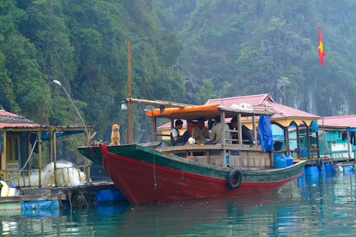 Men playing cards on a boat in Halong Bay
